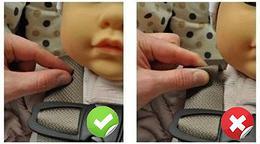 harnais siège bébé